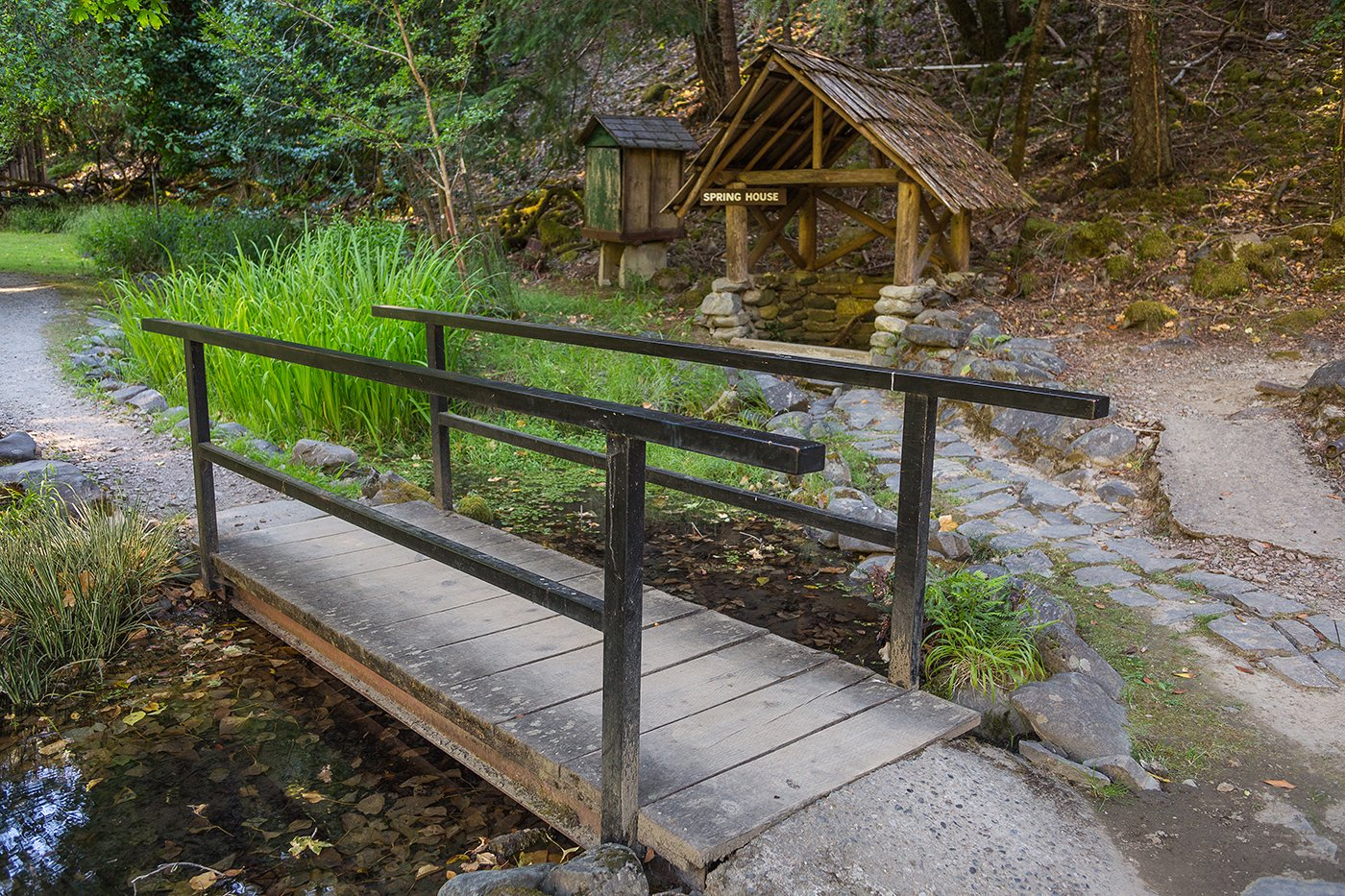 Bridge next to the Spring House at Black Bar Lodge on the Wild & Scenic Rogue River